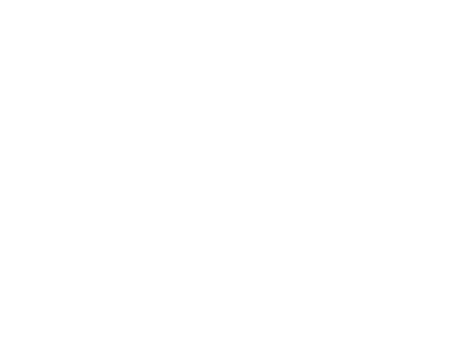 RAV4 4WD X
